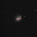NGC 7479,                                dsurfingmark
