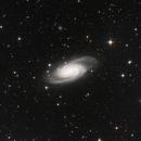 NGC 2903,                                Don Reed