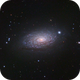 M63 Sunflower Galaxy (CVn) in LRGB,                                Ben Koltenbah