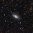 NGC2403,                                Almos Balasi