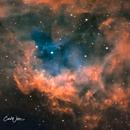 Sh2-261 Lower's Nebula,                                Carl Weber