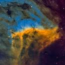 IC5070 Pelican - HH55 close up,                                marsbymars
