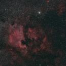 NGC 7000,                                mirkovacik