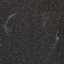 Veil Nebula Region,                                Jan Curtis