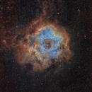 Rosette nebula,                                Atsushi Ono