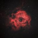 Rosette/ Skull Nebula,                                Ali Namdar