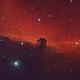 IC434 Horse Head Nebula,                                JM