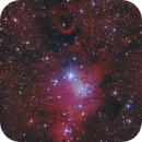 Cone Nebula + Christmas Tree Cluster with DSLR,                                Michael S.