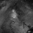NGC 2264 Cone nebula Ha,                                Frank Rauschenbach