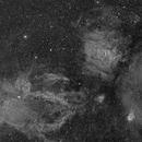 Bubble/Lobster Claw Nebulas,                                wjf56