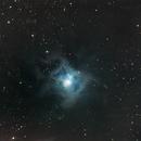 NGC 7023 Iris-Nebel,                                Otto Heiburg