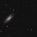 NGC7606,                                Kevin Parker