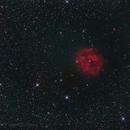 IC5146,                                Federico Bossi