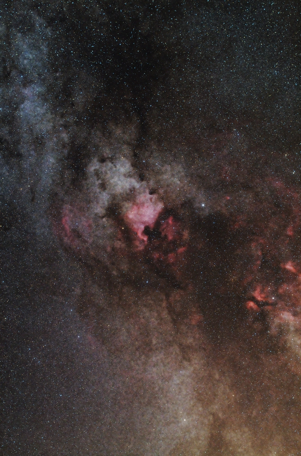NGC 7000 North America Nebula & Friends,                                Roland Schliessus