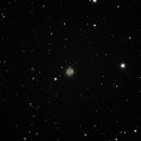 Bear Paw Galaxy - NGC 2537 - Arp 6,                                Corey Rueckheim