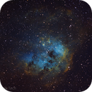 IC410 Tadpoles in Hubble Palette,                                AstroGeek