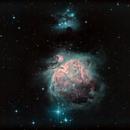 M 42 Orion Nebula,                                herwig_p