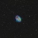 Messier 1 in Taurus: the Crab Nebula,                                Steve Milne