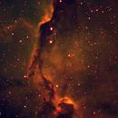 Elephant trunk nebula,                                Arne Bjorndahl