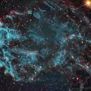 IC443 - Jellyfish Nebula,                                Caroline Berger