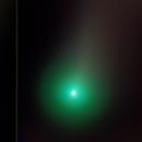 Evolution of Comet NEOWISE,                                Debra Ceravolo