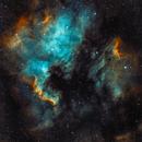 North America and Pelican Nebulae, SHO,                                Panagiotis Andreou