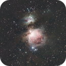 M42 - The Great Nebula in Orion,                                Steven Rundle