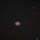 M1 Crab Nebula,                                Wolfgang Ransburg