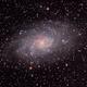 M33 (Triangulum Galaxy),                                Space_Cat