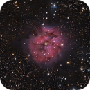 The Cocoon Nebula in One Shot Color,                                Alex Roberts