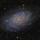 M33 Triangulum Galaxy,                    Jerry Macon