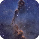 Elephant's Trunk Nebula IC 1396,                                Chad Adrian