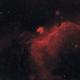 Seagull Nebula - IC2177 - HaRGB,                                Nico Carver