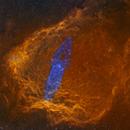 Giant Squid Nebula(OU4) in Flying Bat Nebula(SH2-129) SHO+RGB,                                Jian Yuan Peng