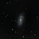 NGC 2903,                                Markus