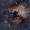 North America & Pelican Nebulas,                                David Augros