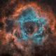 NGC2244 Rosette SHO,                                Nik Coli