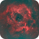 C 49 Rosetta Nebula-Ha-HOO-Meade 80 ED triplet-Orion flattener-ASI 1600-MM-Pro,                                Adel Kildeev