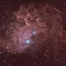 nebulosa IC405,                    Rolando Ligustri
