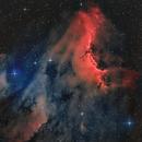 Nebulosa Pelícano,                                Aniceto Porcel