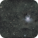 Iris Nebula - LRGB - QHY600,                                Eric Walden