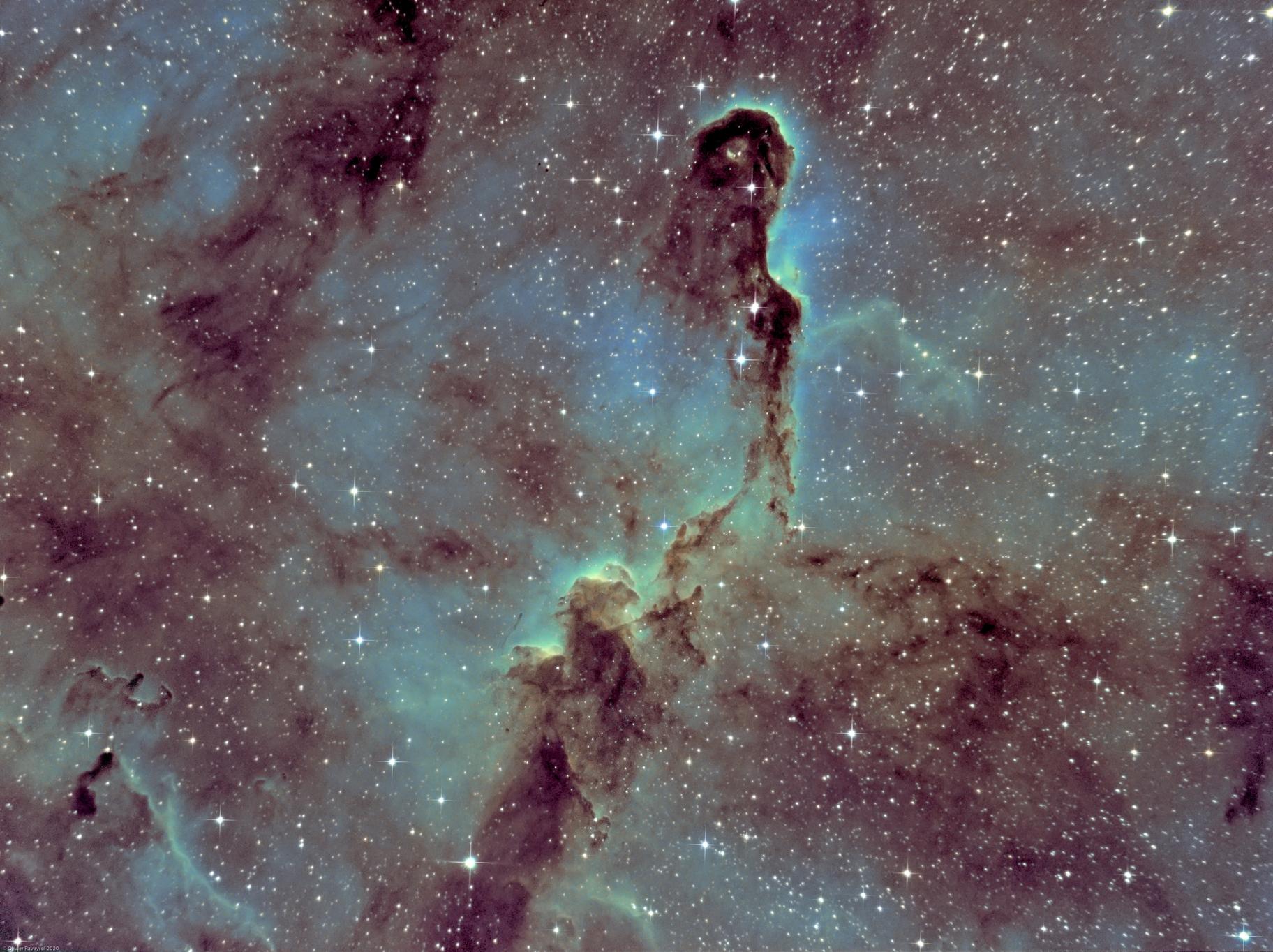 IC1396 - Elephant's Trunk Nebula (Ha-SHO),                                Olivier Ravayrol