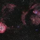 Rosette Nebula,                                Jim Matzger