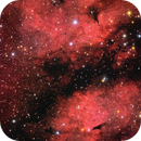 IC 1318,                                Dave59