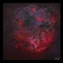 Elephant's Trunk Nebula IC1396 HaRGB,                                Göran Nilsson