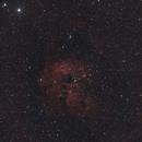 nebulosa IC 410,                                Nicola Russo
