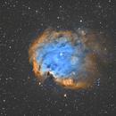 NGC2174 La nébuleuse de la tête de singe,                                Camille COLOMB
