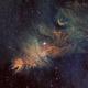 NGC 2264,                                John Thompson