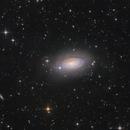 Messier 63 with DSLR,                                Jenafan