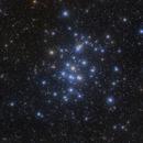M44 - The Beehive Cluster,                                Michael Feigenbaum
